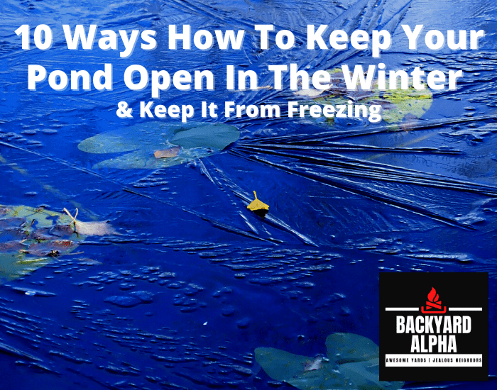 10 Ways How To Keep Your Pond Open In The Winter & Keep It From Freezing