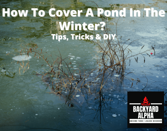 How To Cover A Pond In The Winter Tips, Tricks & DIY